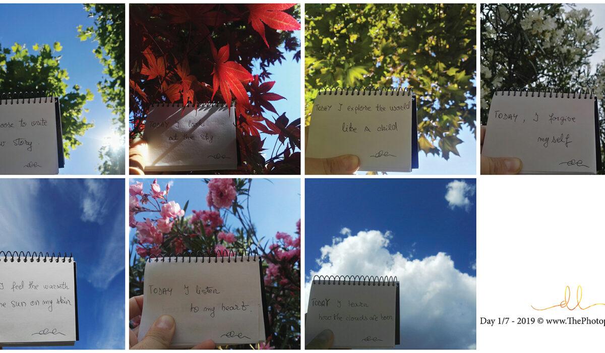 The Photopoetry Book ~ week 1/ TheEndlessChallenge ~