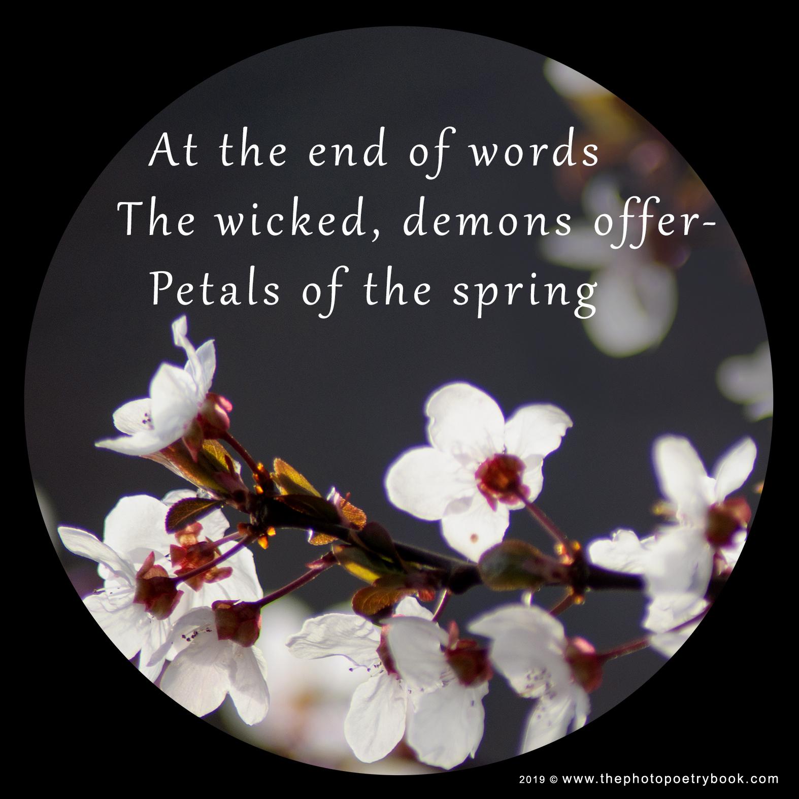 A Photohaiku - Haiku 3 - The End