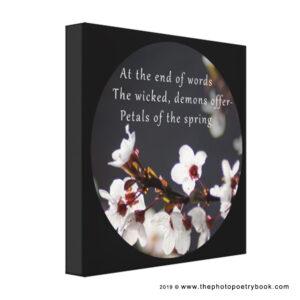 A Photohaiku - Haiku 3 - The End - Black Canvas