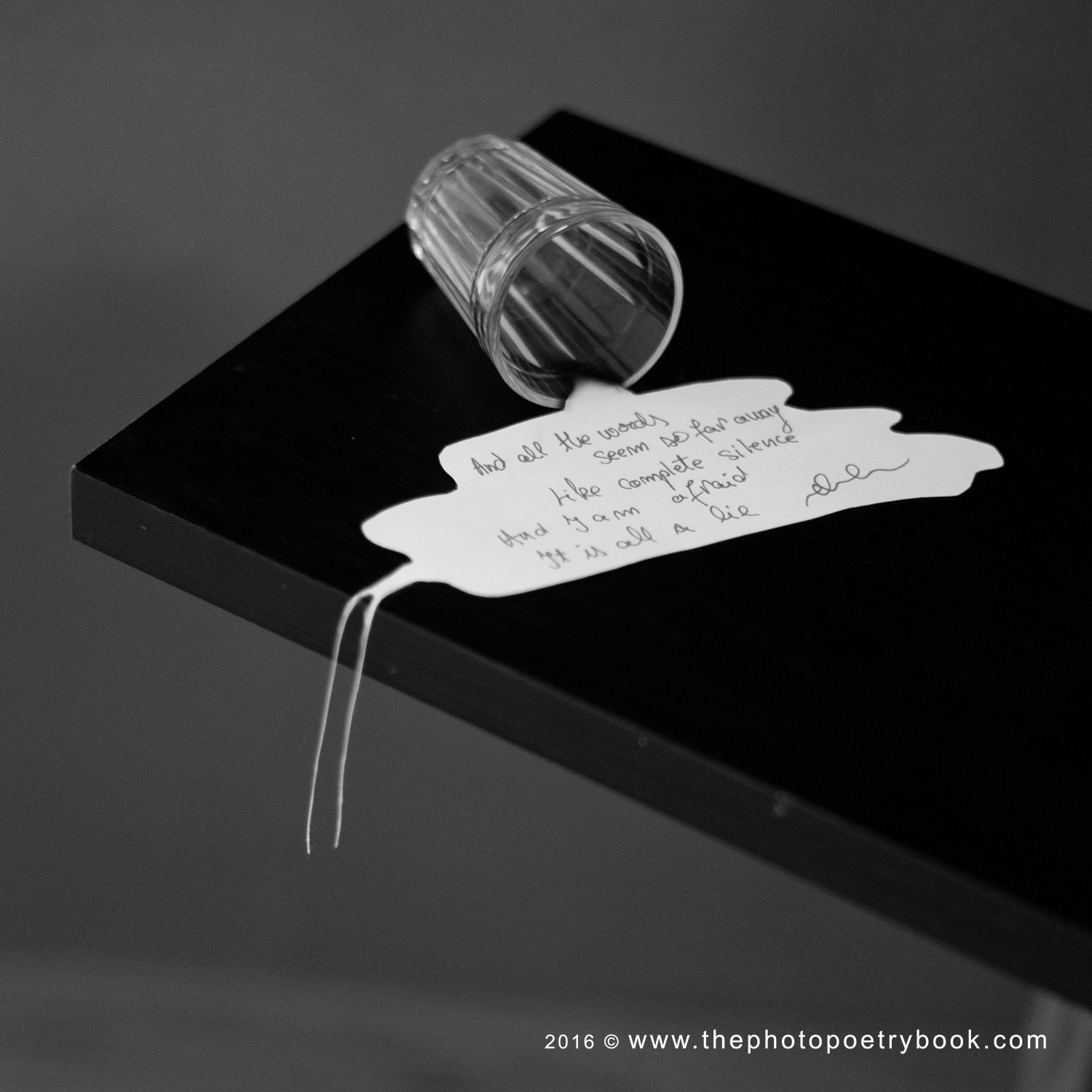 The Photo Poetry Book ~ a year of 366 days of PhotoPoetry~ Day 167 - Lie