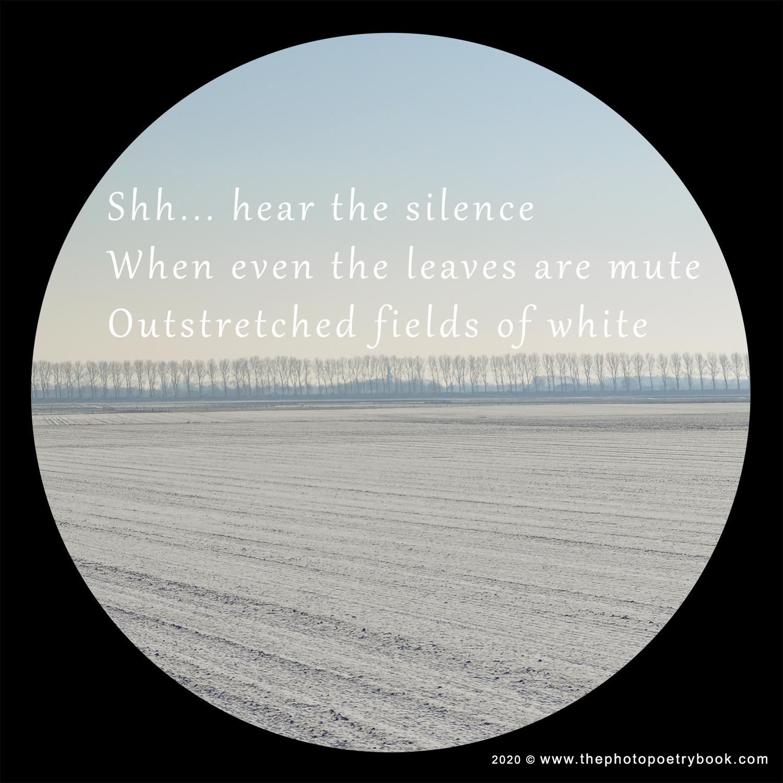 Silence ~ Seasons ~ A Photohaiku