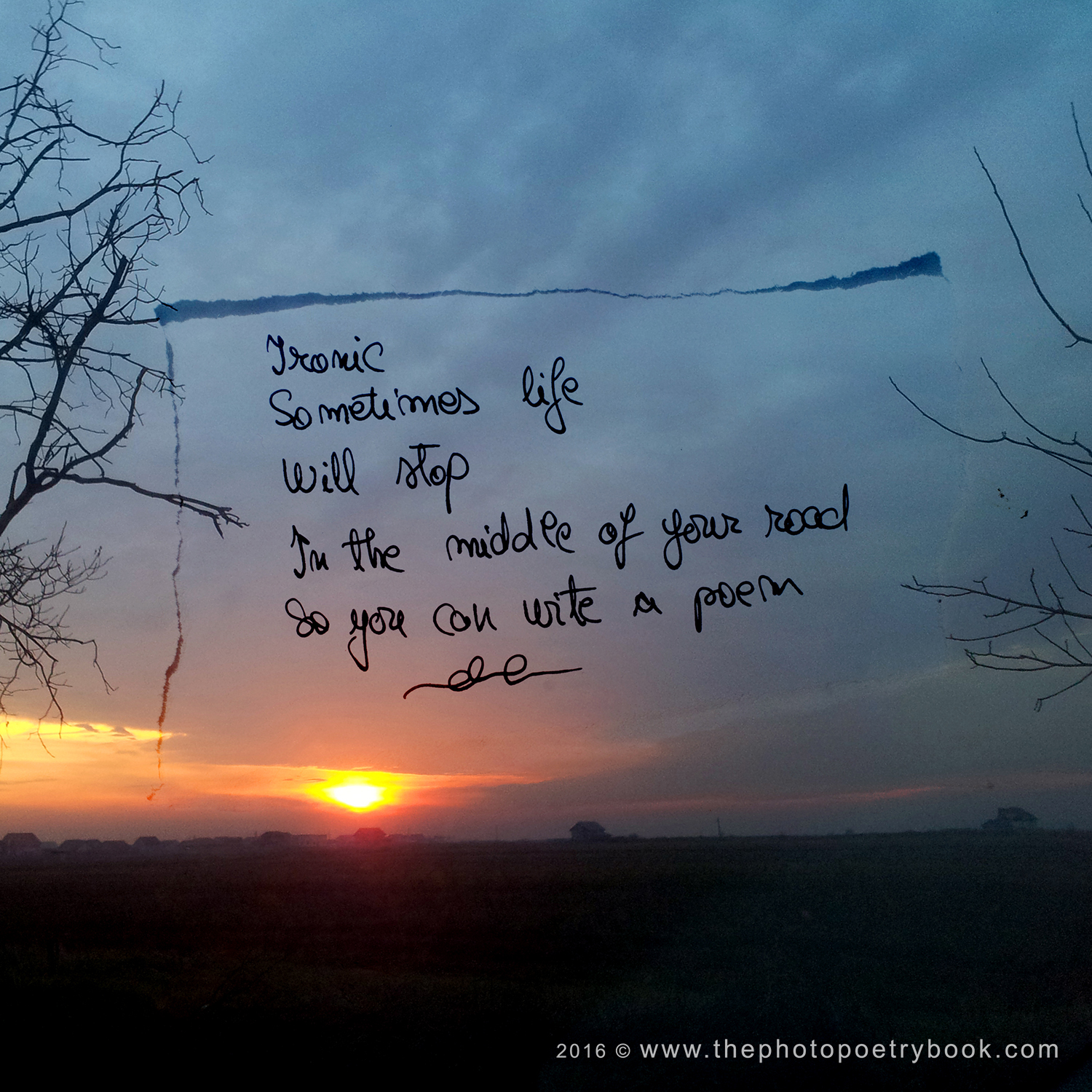 The Photo Poetry Book ~ a year of 366 days of PhotoPoetry~ Day 330 - Write