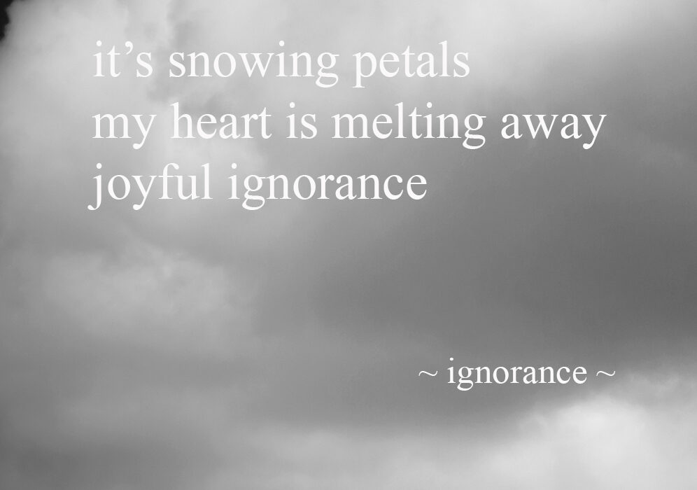 Ignorance ~ A Photohaiku