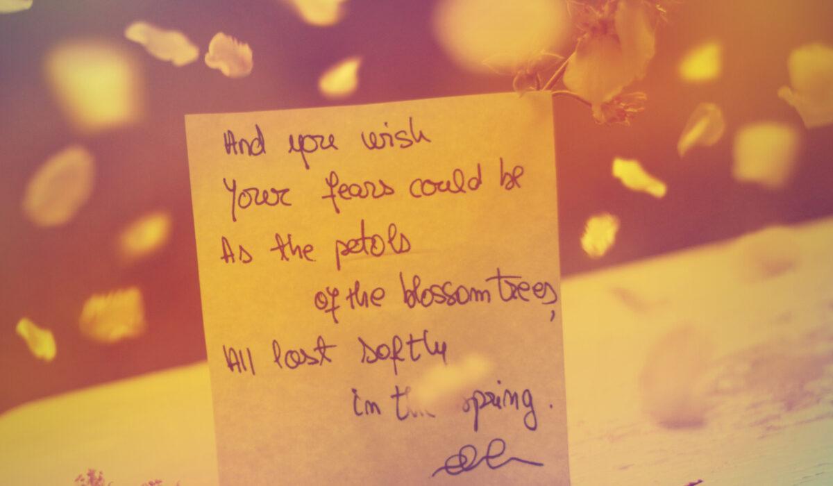 Petals - a Photopoem
