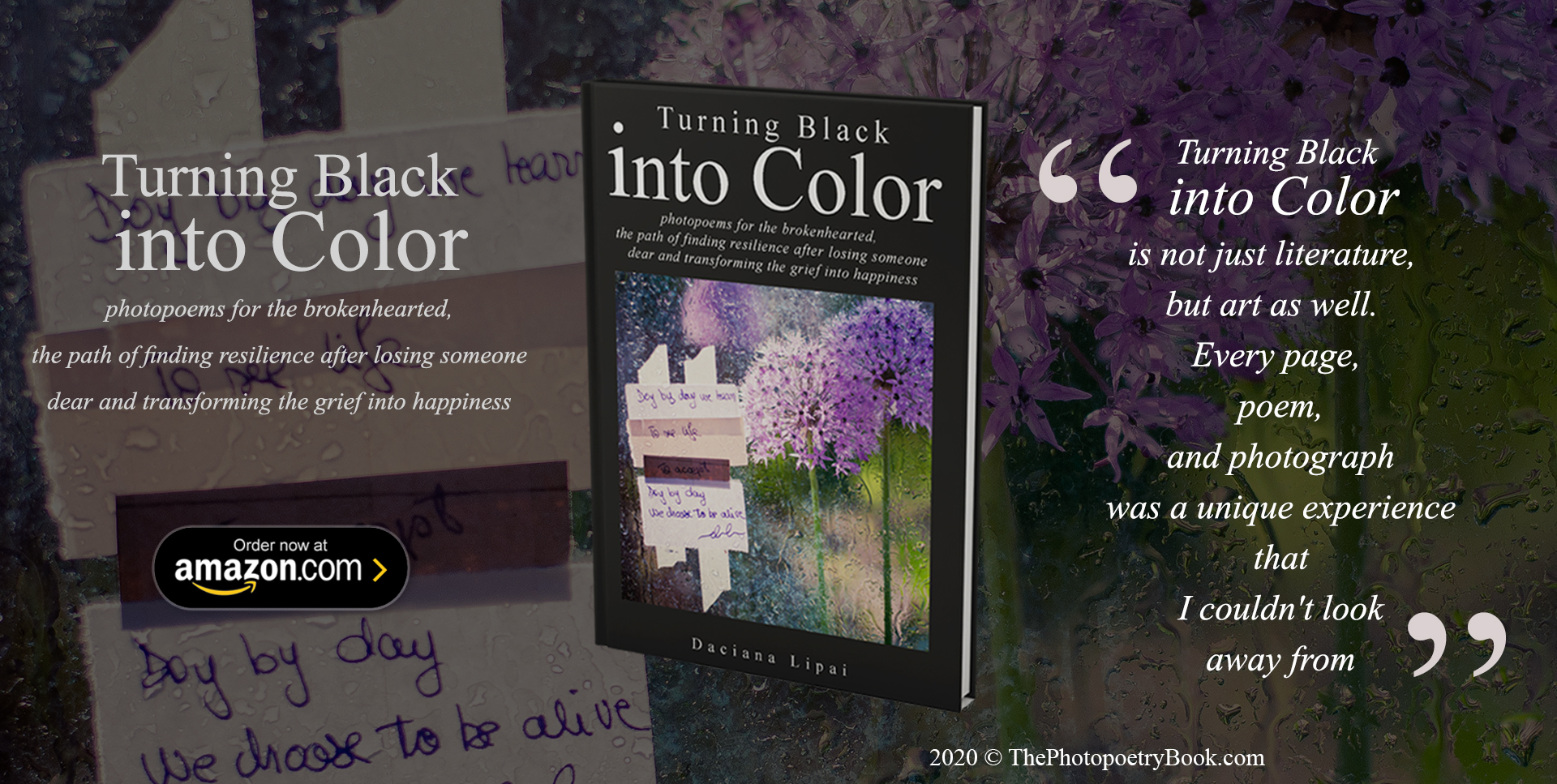 Turning Black into Color Book Launch Live on Amazon