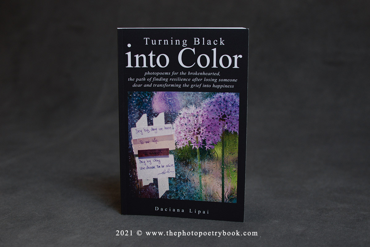 Daciana Lipai Turning Black into Color Book